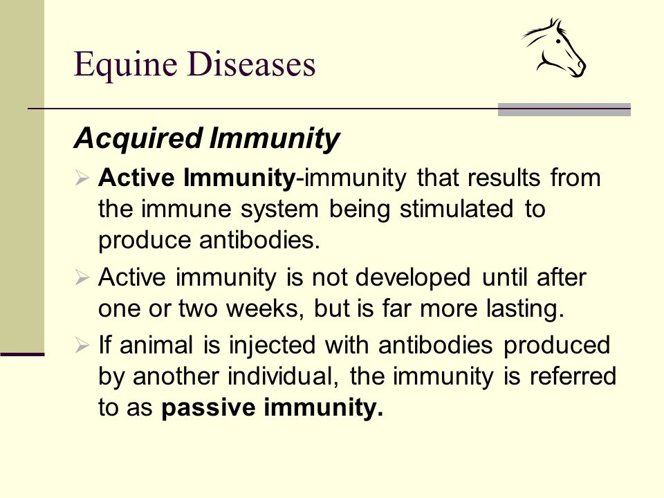 Equine Diseases Acquired Immunity  Active Immunity-immunity that results from the immune system being stimulated to produce antibodies.