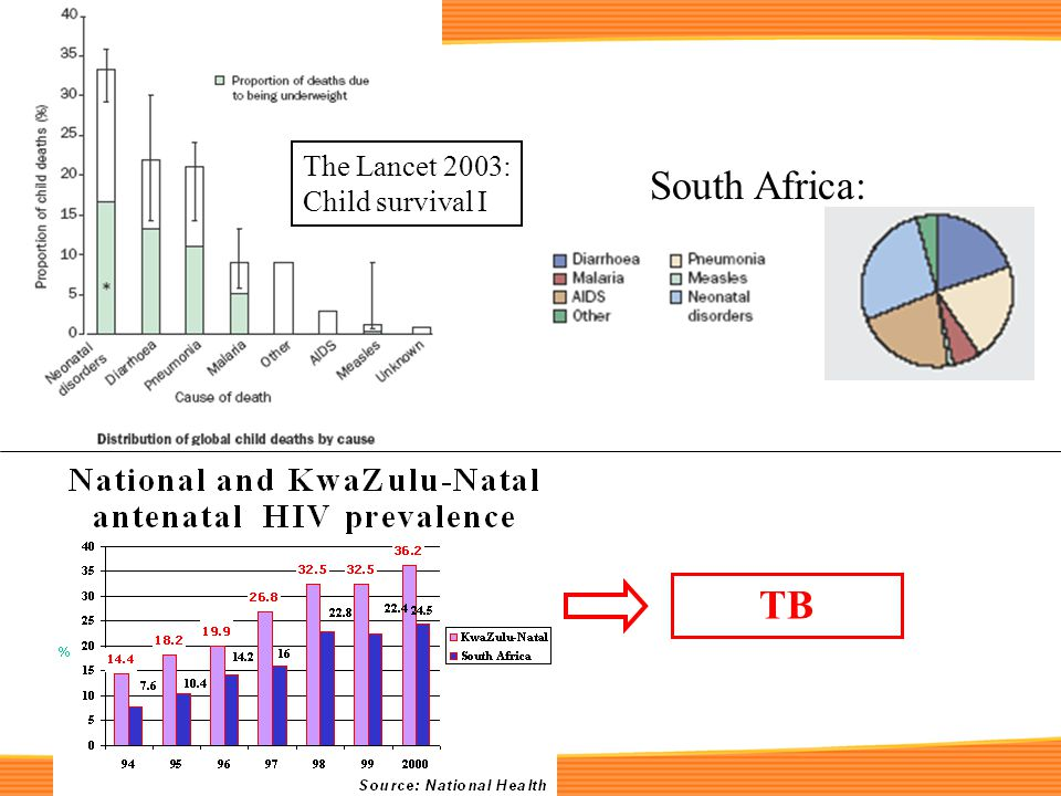 South Africa: The Lancet 2003: Child survival I TB