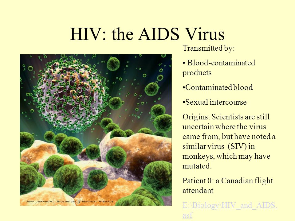 Examples of Viruses HIV- causes AIDS; attacks white blood cells/immune system; death usually occurs from getting sick from another disease; high rate of mutation Kaposi's sarcoma
