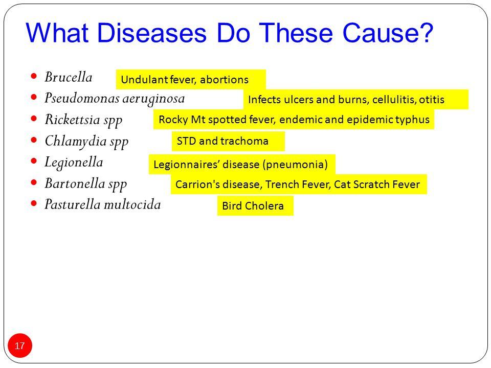 Brucella Pseudomonas aeruginosa Rickettsia spp Chlamydia spp Legionella Bartonella spp Pasturella multocida What Diseases Do These Cause? 17 Carrion's