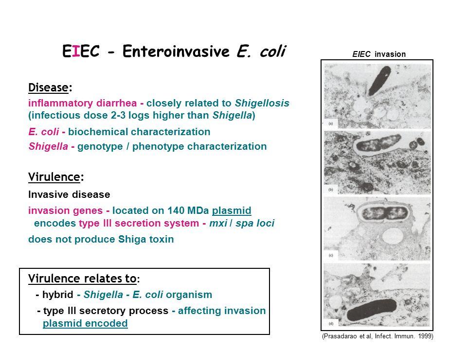 EIEC - Enteroinvasive E.