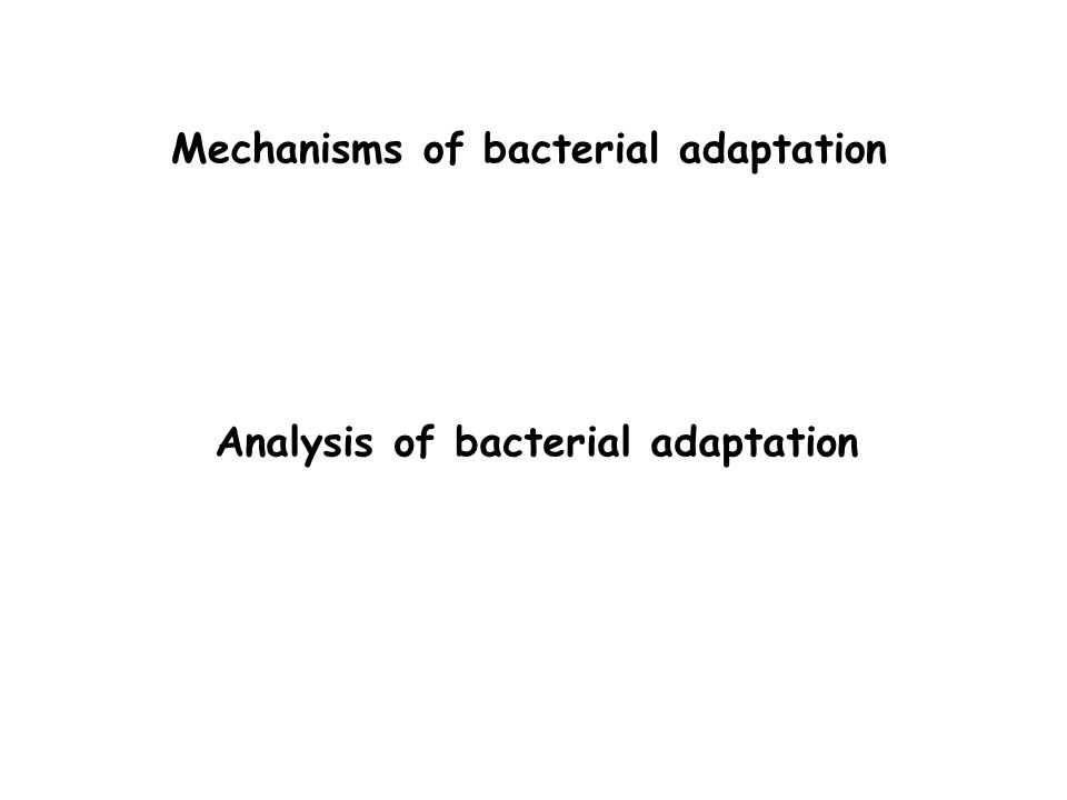 Mechanisms of bacterial adaptation Analysis of bacterial adaptation