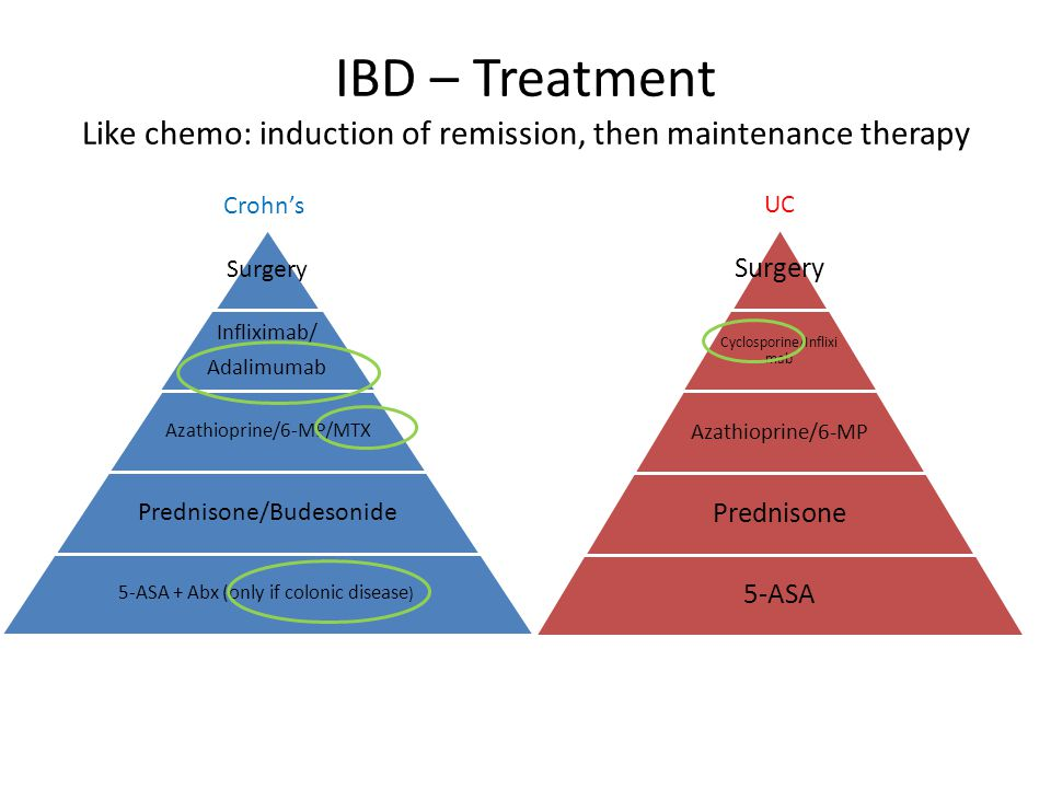 IBD – Treatment Like chemo: induction of remission, then maintenance therapy Surgery Cyclosporine/Inflixi mab Azathioprine/6-MP Prednisone 5-ASA Surge