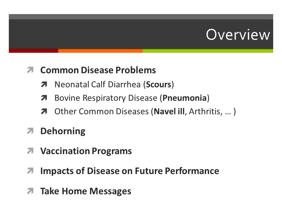 Common Calf Diseases  Scours (Diarrhea)  Pneumonia (BRD)  Septicemia  Joint ill (Arthritis)  Navel ill (Omphalophlebitis)  Meningitis  Bloat  Deficiencies  Malformations www.canadianhay.com
