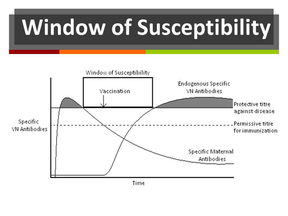 Window of Susceptibility