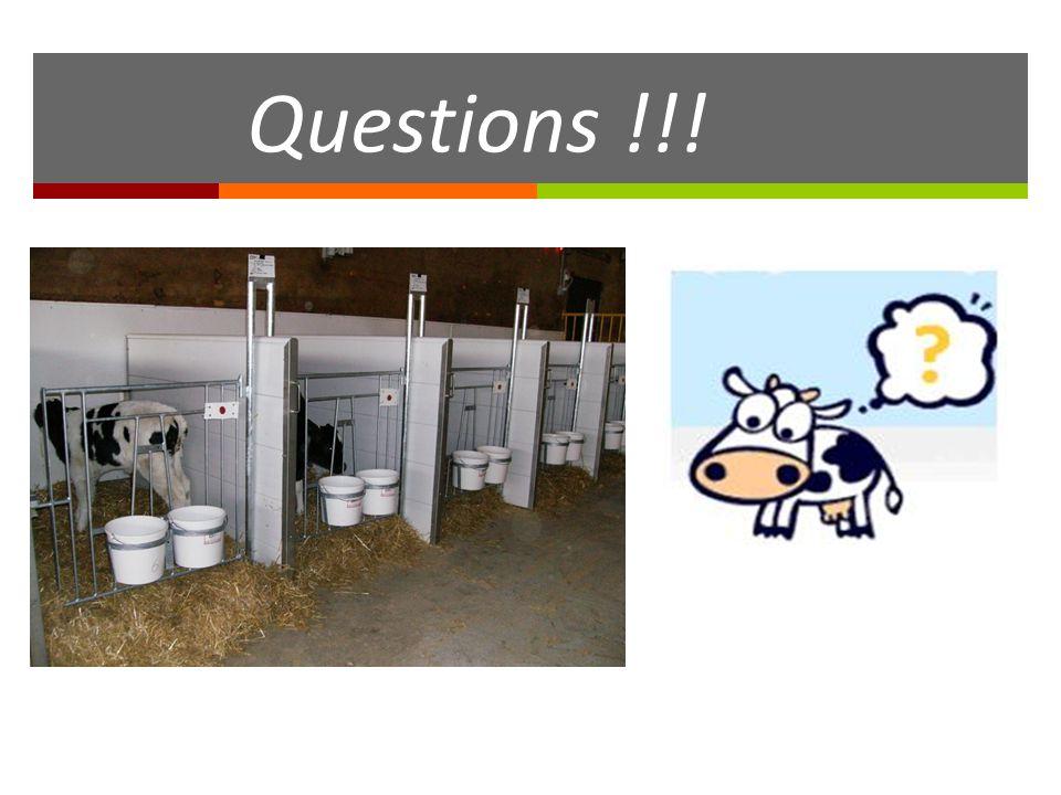 Questions !!!