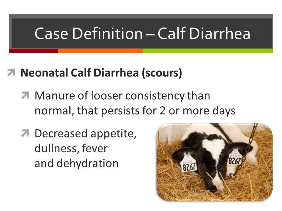 Other Calf Diseases  Scours (Diarrhea)  Pneumonia (BRD)  Septicemia  Joint ill (Arthritis)  Navel ill (Omphalophlebitis)  Meningitis  Bloat  Deficiencies  Malformations