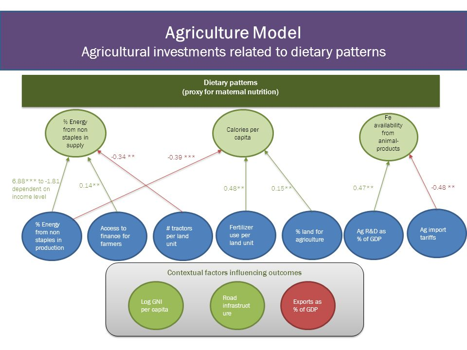 Agriculture Model Agricultural investments related to dietary patterns Dietary patterns (proxy for maternal nutrition) Dietary patterns (proxy for mat
