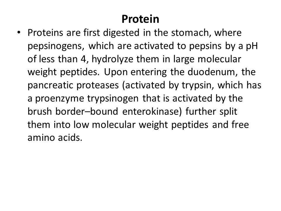 Protein Proteins are first digested in the stomach, where pepsinogens, which are activated to pepsins by a pH of less than 4, hydrolyze them in large
