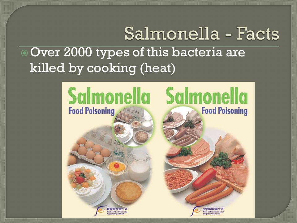  Over 2000 types of this bacteria are killed by cooking (heat)