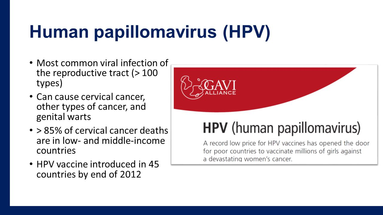 Human papillomavirus (HPV) Most common viral infection of the reproductive tract (> 100 types) Can cause cervical cancer, other types of cancer, and genital warts > 85% of cervical cancer deaths are in low- and middle-income countries HPV vaccine introduced in 45 countries by end of 2012