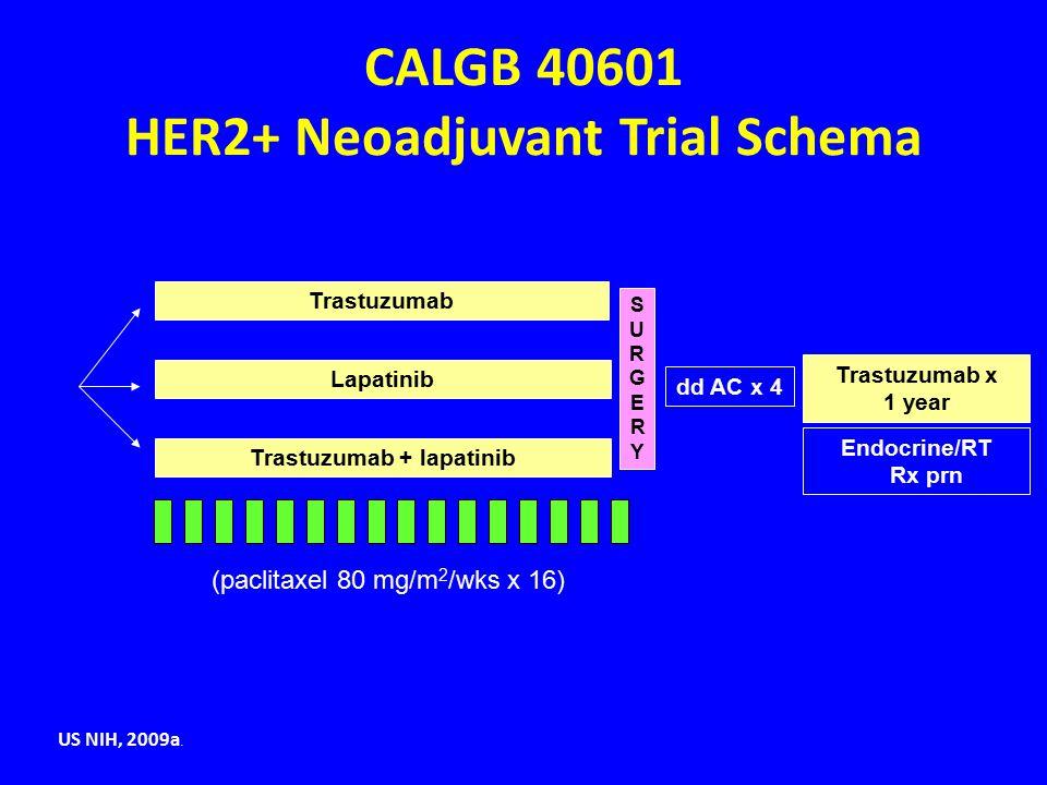 (paclitaxel 80 mg/m 2 /wks x 16) CALGB 40601 HER2+ Neoadjuvant Trial Schema SURGERYSURGERY dd AC x 4 Trastuzumab x 1 year Endocrine/RT Rx prn Trastuzu