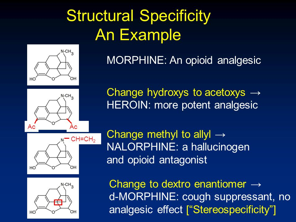 Structural Specificity An Example Ac CH=CH 2 MORPHINE: An opioid analgesic Change hydroxys to acetoxys → HEROIN: more potent analgesic Change methyl t