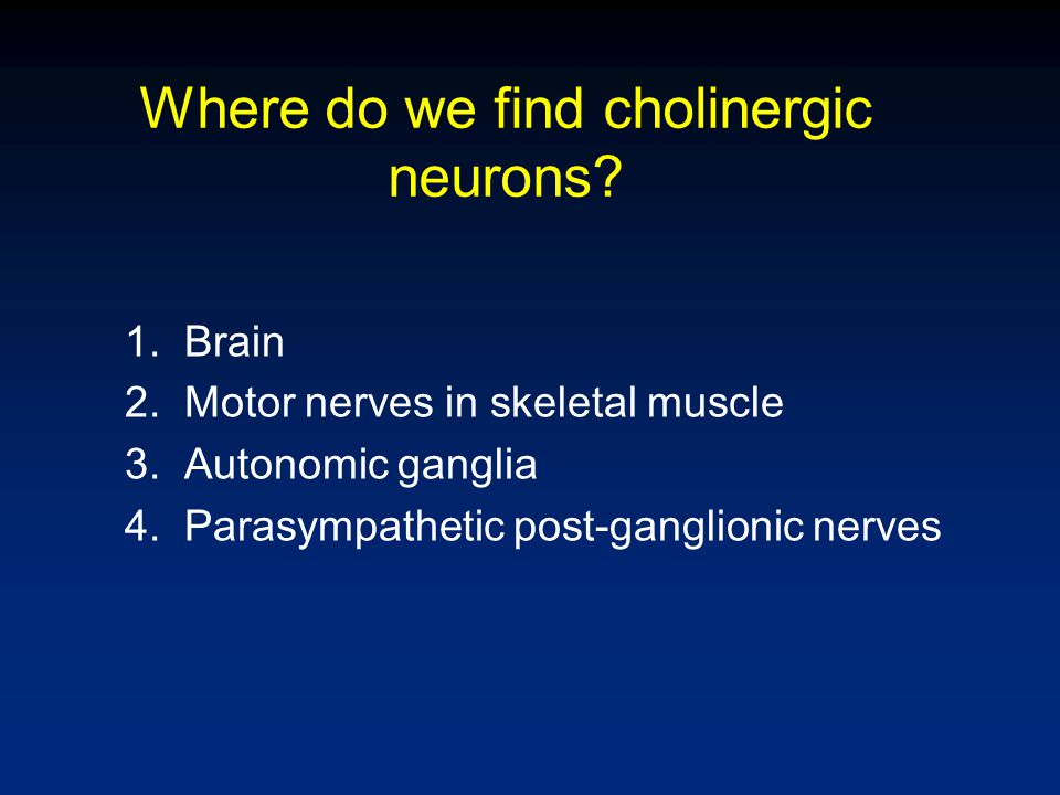 Cholinergic Neurons in the Brain Nucleus Basalis of Meynert – involved in memory, alertness Pedunculopontine projection involved in sleep-wake cycle Cholinergic receptors in the brain are Nicotinic n and Muscarinic