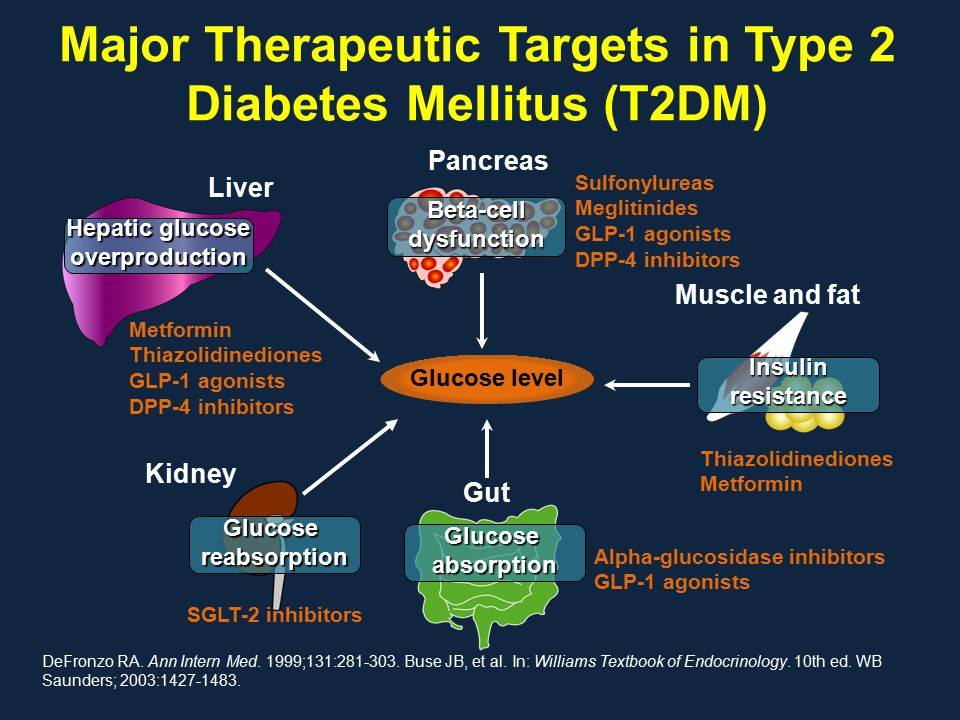 Major Therapeutic Targets in Type 2 Diabetes Mellitus (T2DM) DeFronzo RA. Ann Intern Med. 1999;131:281-303. Buse JB, et al. In: Williams Textbook of E