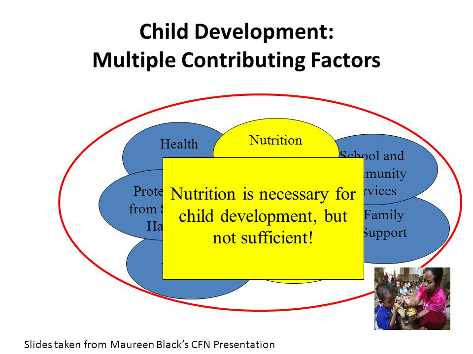 Family Support School and Community Services Child Development: Multiple Contributing Factors Health Nutrition Learning Opportunities Sensitive/ Responsive Caregiving Social Protection Protection from Stress/ Harm Nutrition is necessary for child development, but not sufficient.