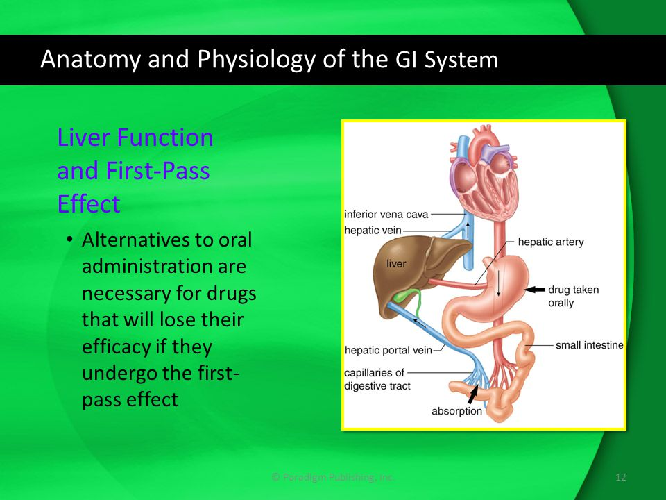 Ausgezeichnet How To Pass Human Anatomy And Physiology Bilder ...