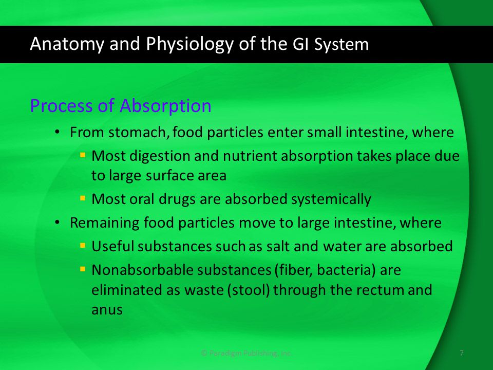 Anatomy and Physiology of the GI System Movement of Ingested Food Peristalsis (process of coordinated muscle contraction) moves food particles through the GI tract  In intestines, process called GI motility Sphincters regulate the speed at which the food particles move through the tract  These muscle rings prevent digested substances from moving in the wrong direction The closing of the lower esophageal sphincter, located between the esophagus and stomach, keeps stomach acid from traveling up the esophagus 8© Paradigm Publishing, Inc.
