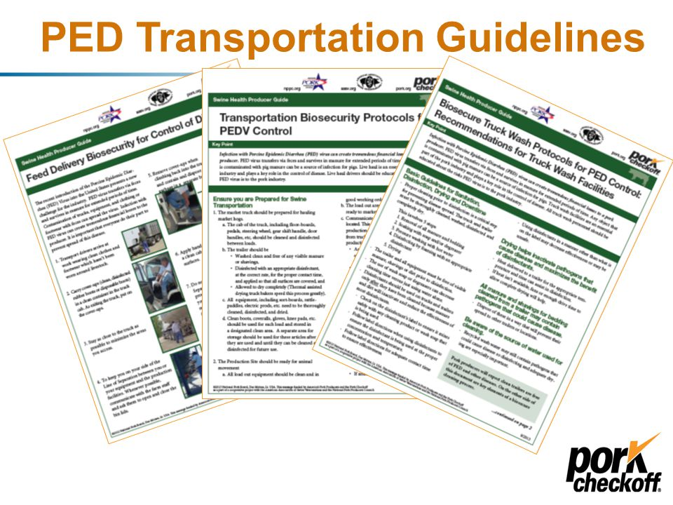Development of Producer Resources Objective: Put together the best people possible to provide recommendations to address PEDV biosecurity and biocontainment; develop key areas of focus, and utilize current knowledge of the virus PED Strategic Task Force –Review, advise, guide –Urgency PED Working Groups NPB Staff Communications Collaborative efforts – NPB/NPPC/AASV/SAHO/etc.: target respective audiences