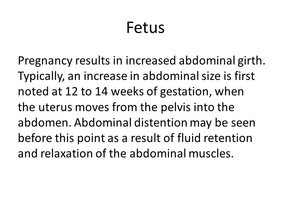 Fetus Pregnancy results in increased abdominal girth. Typically, an increase in abdominal size is first noted at 12 to 14 weeks of gestation, when the