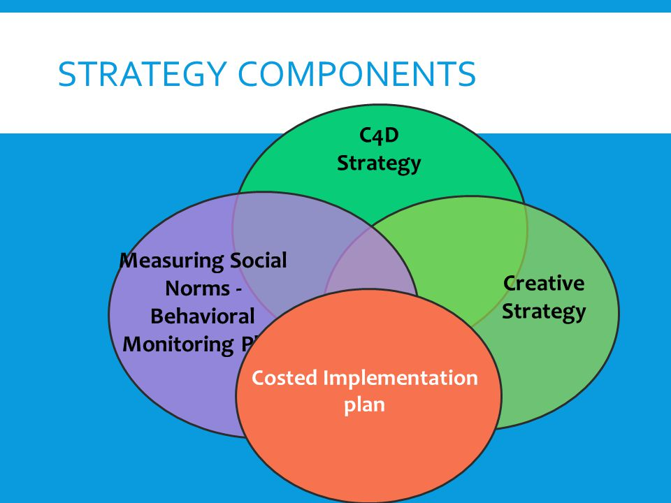 Costed Implementation plan STRATEGY COMPONENTS