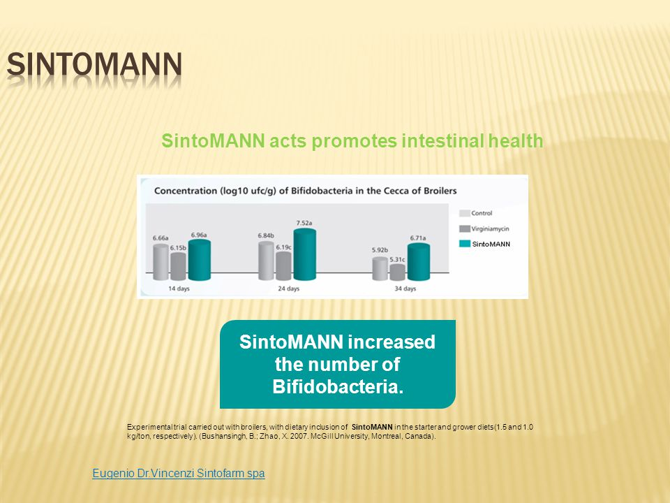 SintoMANN acts promotes intestinal health SintoMANN increased the number of Bifidobacteria. Experimental trial carried out with broilers, with dietary