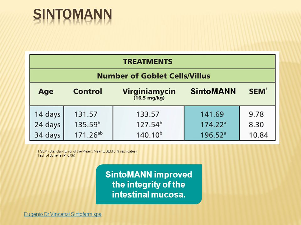 1 SEM (Standard Error of the Mean): Mean ± SEM of 9 replicates). Test of Scheffe (P>0.05) SintoMANN improved the integrity of the intestinal mucosa. E