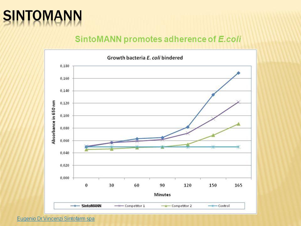 SintoMANN promotes adherence of E.coli Eugenio Dr.Vincenzi Sintofarm spa
