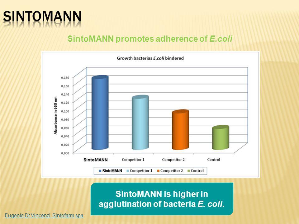 SintoMANN is higher in agglutination of bacteria E. coli. SintoMANN promotes adherence of E.coli Eugenio Dr.Vincenzi Sintofarm spa
