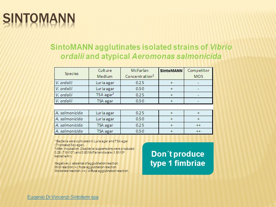 SintoMANN agglutinates isolated strains of Vibrio ordalii and atypical Aeromonas salmonicida ¹ Bacteria were cultivated in Luria agar and TSA agar (Tr