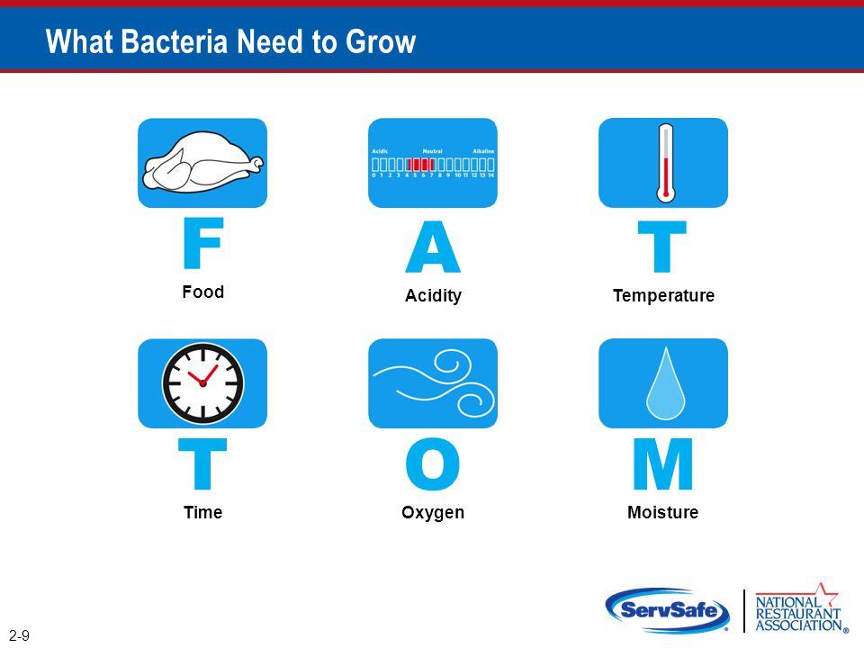 What Bacteria Need to Grow F Food 2-9 A Acidity T Temperature T Time O Oxygen M Moisture