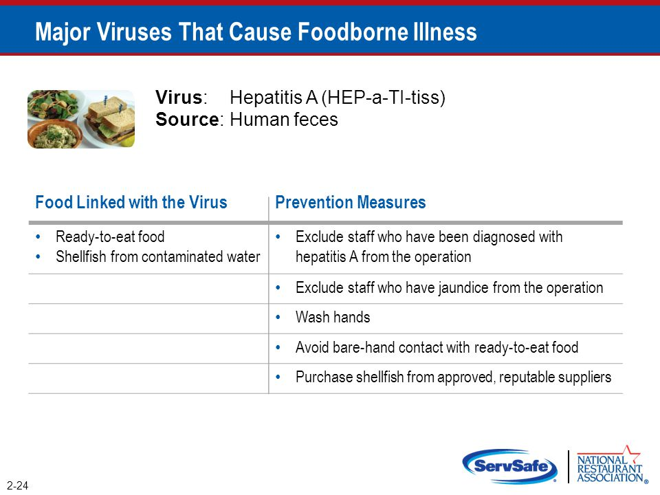 2-24 Major Viruses That Cause Foodborne Illness Virus:Hepatitis A (HEP-a-TI-tiss) Source:Human feces Food Linked with the VirusPrevention Measures Rea