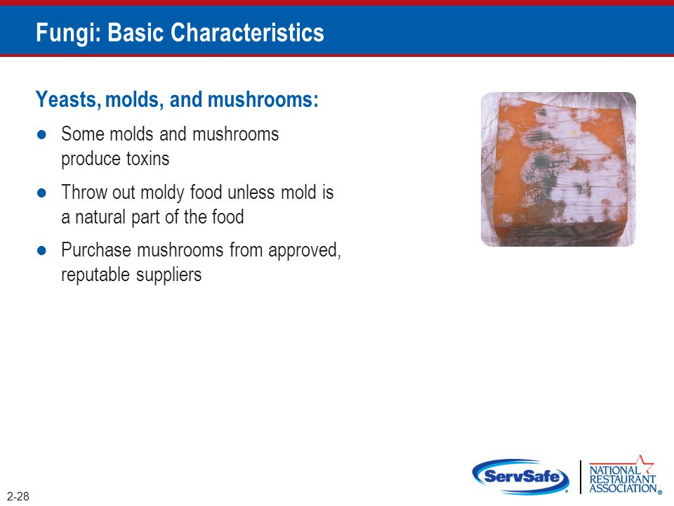 Yeasts, molds, and mushrooms: Some molds and mushrooms produce toxins Throw out moldy food unless mold is a natural part of the food Purchase mushroom