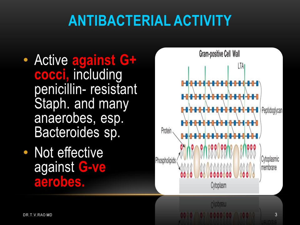 Active against G+ cocci, including penicillin- resistant Staph.