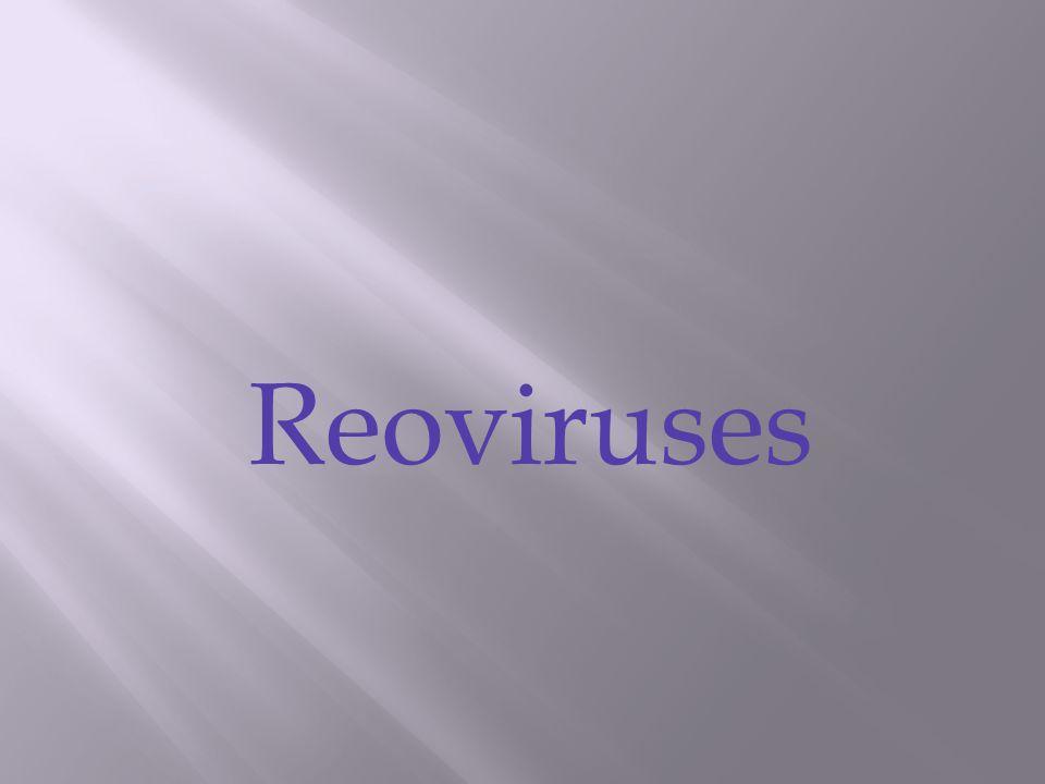 Reoviruses