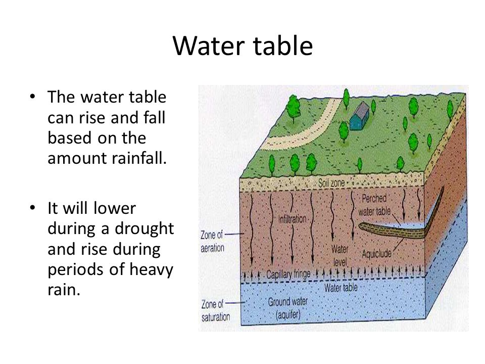 Water table The water table can rise and fall based on the amount rainfall. It will lower during a drought and rise during periods of heavy rain.