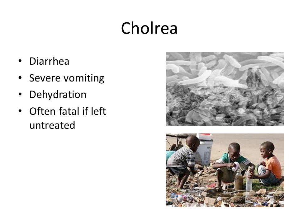 Cholrea Diarrhea Severe vomiting Dehydration Often fatal if left untreated