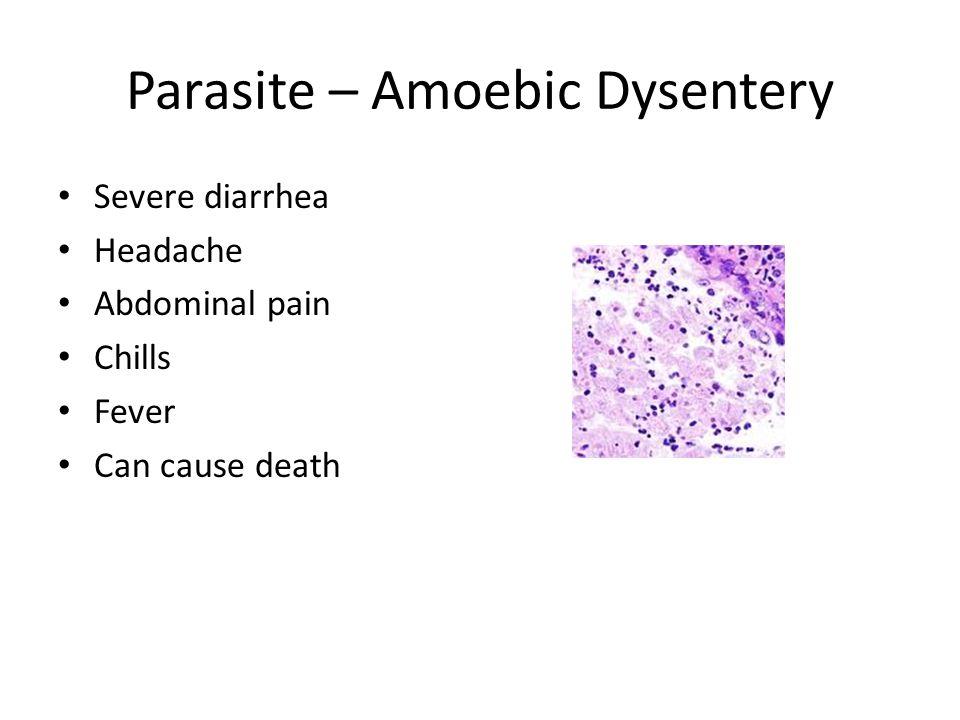 Parasite – Amoebic Dysentery Severe diarrhea Headache Abdominal pain Chills Fever Can cause death