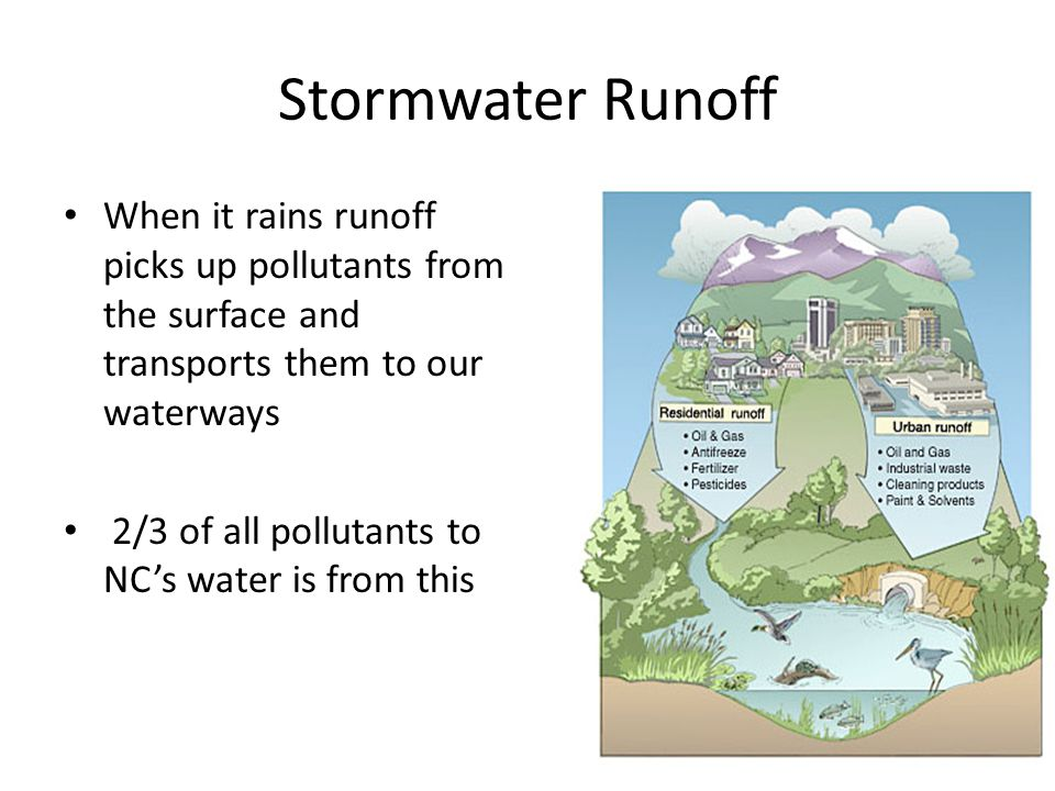 Stormwater Runoff When it rains runoff picks up pollutants from the surface and transports them to our waterways 2/3 of all pollutants to NC's water i