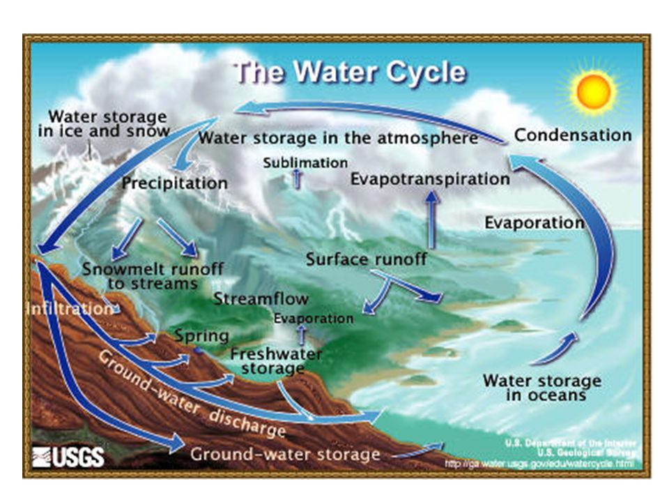 Sediment Examples: soil, silt Major Human Souces: land erosion Harmful Effects: – Cloud water and prohibit photosynthesis – Disrupt aquatic food webs – Carry pesticides, bacteria, and other harmful substances – Clog and fill lakes