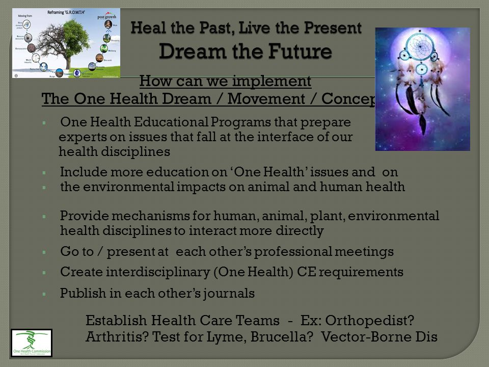 How can we implement The One Health Dream / Movement / Concept?  One Health Educational Programs that prepare experts on issues that fall at the inte