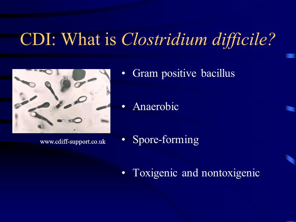 CDI: What is Clostridium difficile.