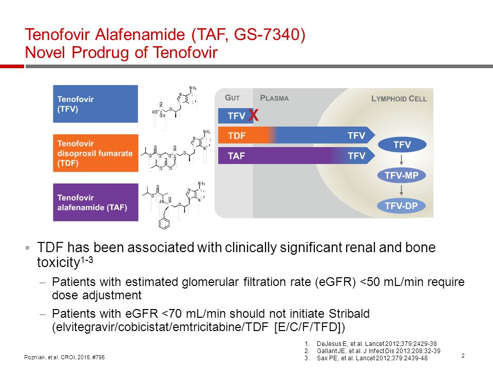2 Tenofovir Alafenamide (TAF, GS-7340) Novel Prodrug of Tenofovir  TDF has been associated with clinically significant renal and bone toxicity 1-3 –