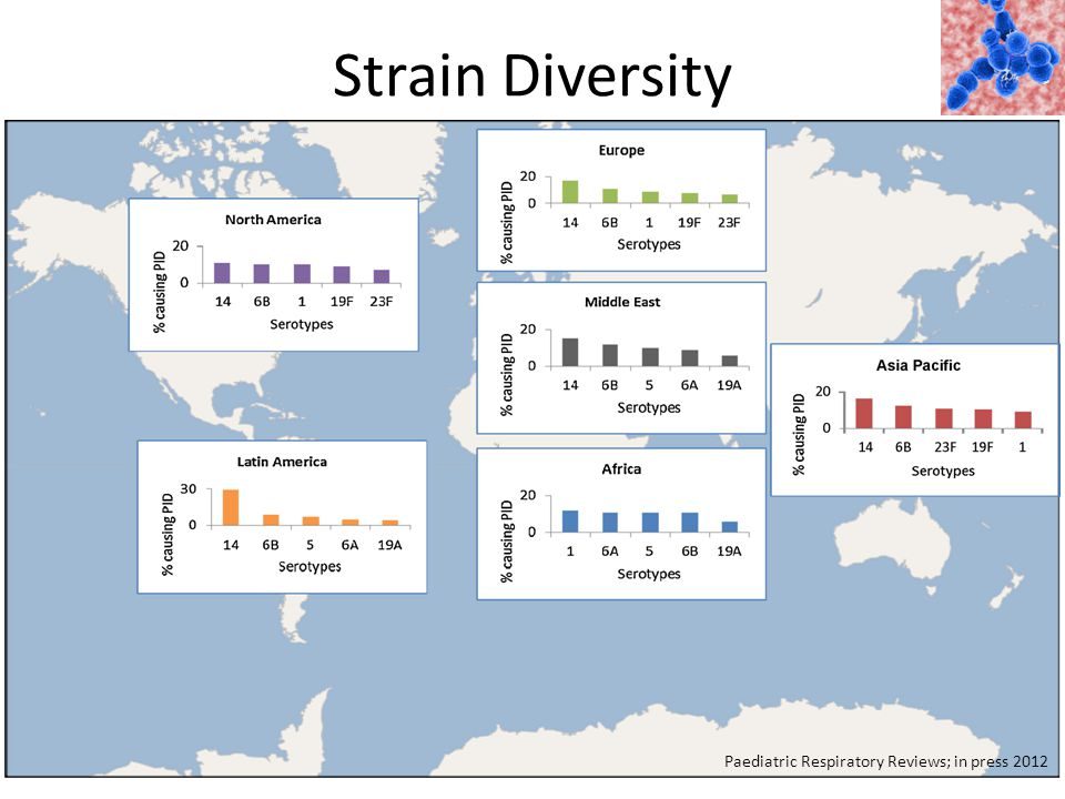 Strain Diversity Paediatric Respiratory Reviews; in press 2012