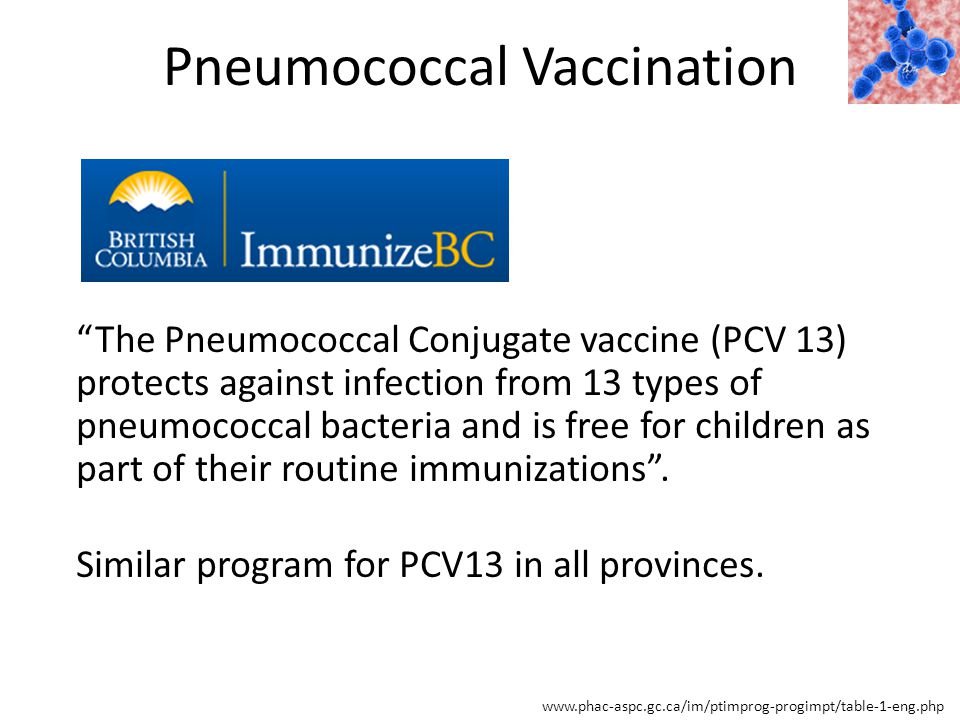 Pneumococcal Vaccination www.phac-aspc.gc.ca/im/ptimprog-progimpt/table-1-eng.php The Pneumococcal Conjugate vaccine (PCV 13) protects against infection from 13 types of pneumococcal bacteria and is free for children as part of their routine immunizations .