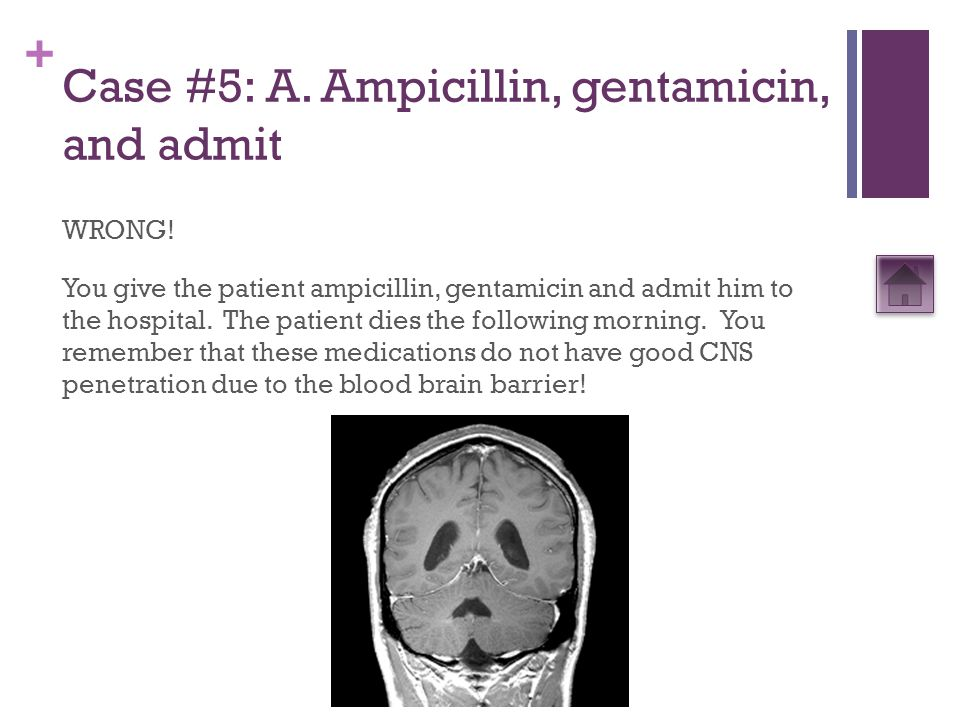 + Case #5: A. Ampicillin, gentamicin, and admit WRONG! You give the patient ampicillin, gentamicin and admit him to the hospital. The patient dies the