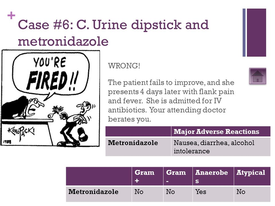 + Case #6: C. Urine dipstick and metronidazole WRONG! The patient fails to improve, and she presents 4 days later with flank pain and fever. She is ad