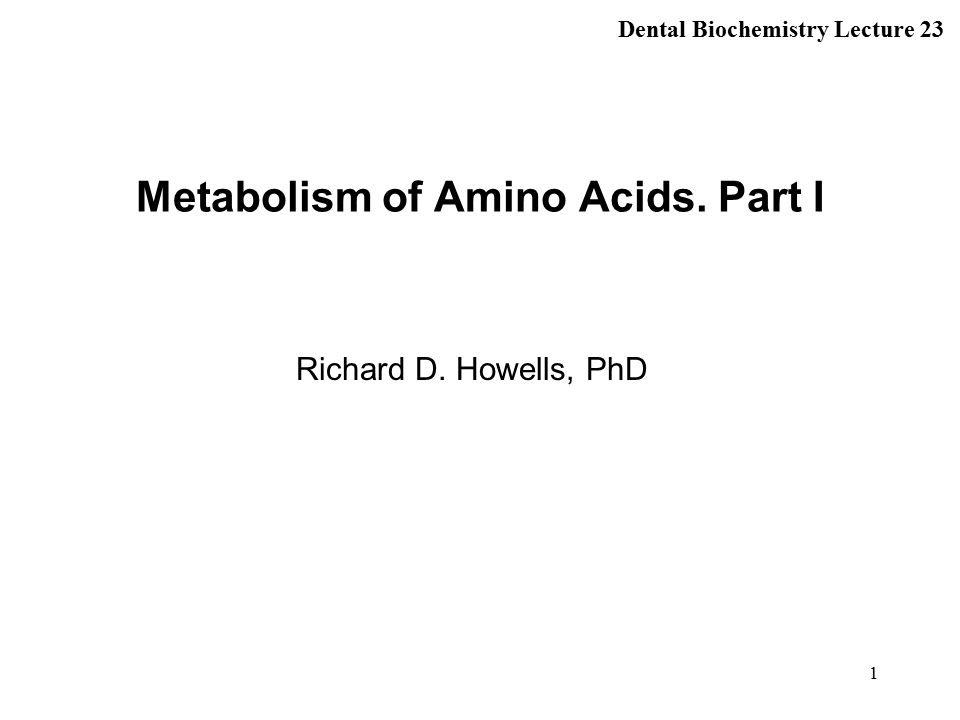 1 Metabolism of Amino Acids. Part I Richard D. Howells, PhD Dental Biochemistry Lecture 23