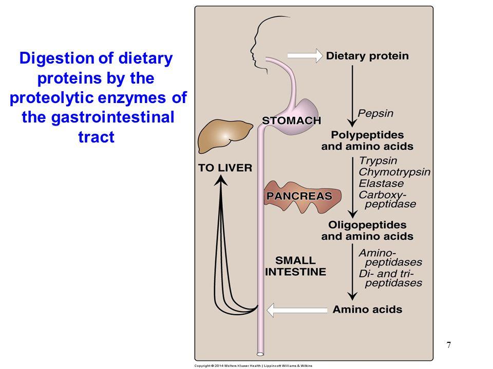18 Pattern of serum ALT and bilirubin in the plasma, following poisoning with the toxic mushroom Amanita phalloides