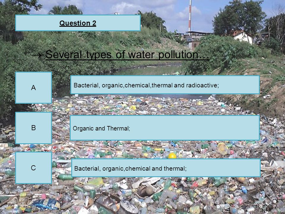 Question 2 A C B Bacterial, organic,chemical,thermal and radioactive; Organic and Thermal; Bacterial, organic,chemical and thermal;  Several types of